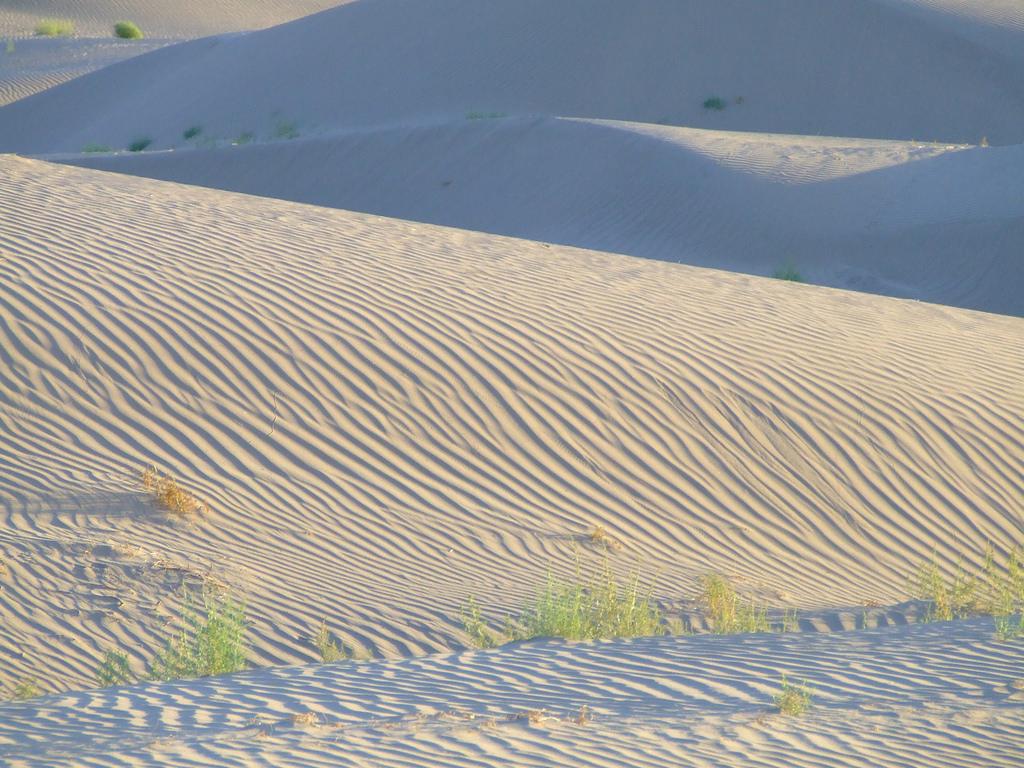 Las-5-razones-para-conocer-las-dunas-de-Bilbao-1.jpg