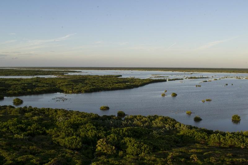 cozumel-reserva-ecologica.jpg